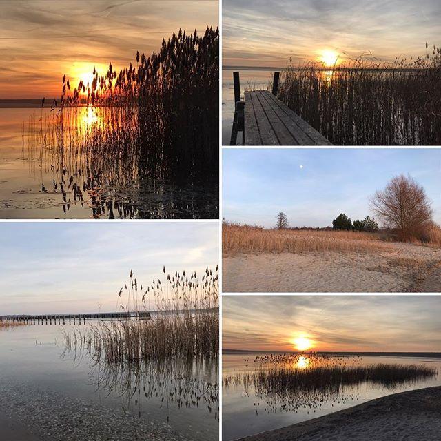 Sonnenuntergang an der Goitzsche ️ #muldestausee #goitzsche #erholung #sonnenuntergang #ferienhaushalbritter #ferienhauspouch #strandpouch #halbinselpouch #pouch