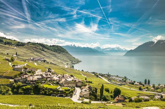 Terrasses Lavaux, Waadt, Schweiz ©Vaud Promotion