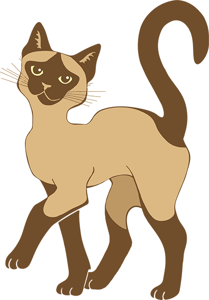 Strutting Siamese Cat - brown point