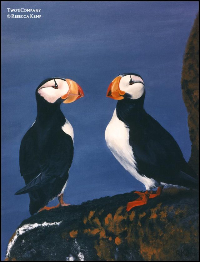 Two's Company - puffins