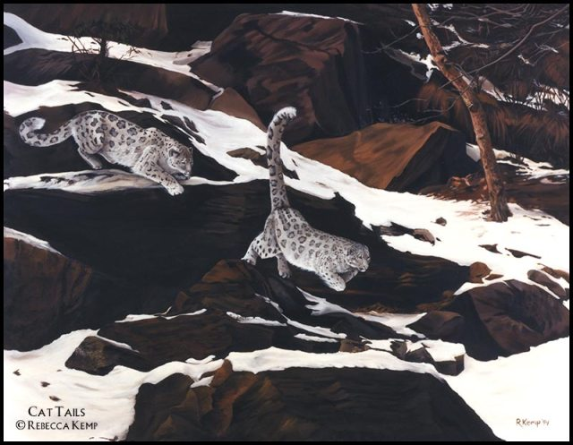 Cat Tails - snowleopards