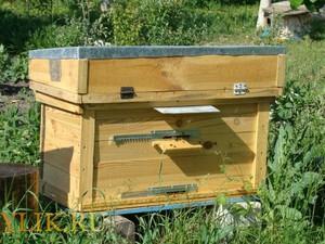 Особенности изготовления пчелиных ульев своими руками