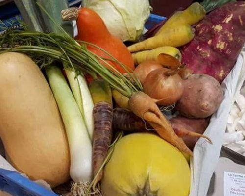 les légumes de saison dans la pure tradition ferme de Berdin Banos