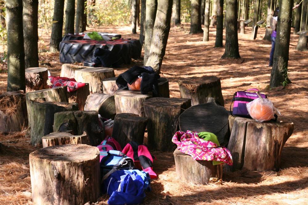 Visites scolaires - Forêt - La Ferme Genest