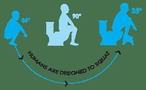 squatty-evolution