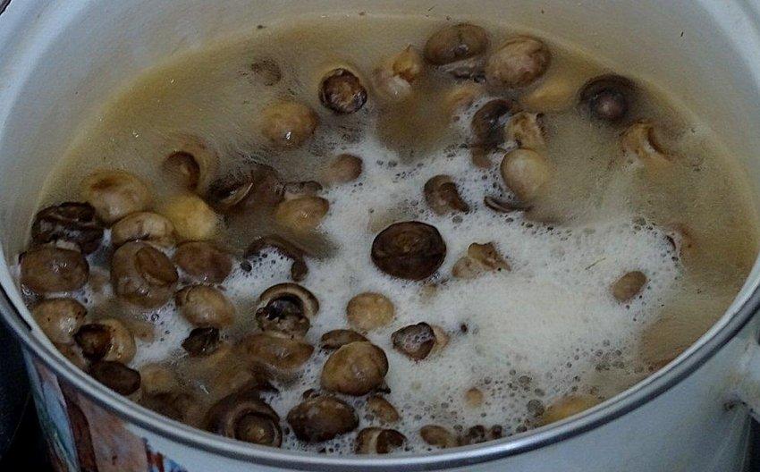 ทำอาหาร Chashignons แช่แข็ง