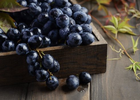 Виноград кишмиш: польза и вред для организма, калорийность ...