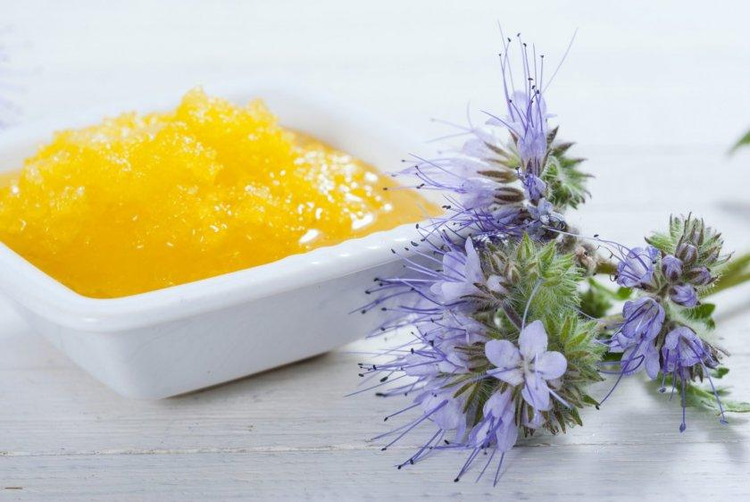 Полезные свойства мёда фацелии