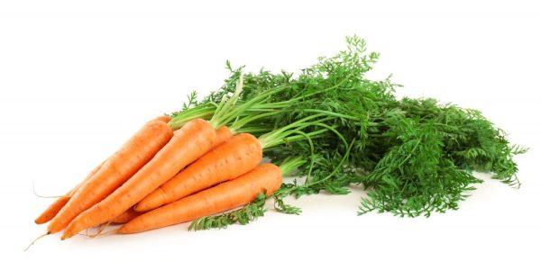 Сорта моркови для Сибири: лучшие семена, отзывы, фото