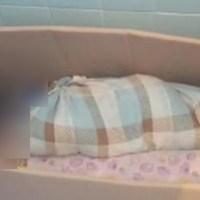 ¡Bestial trato en guardería! Amarraban a los bebés y los metían en cajas de cartón (VIDEO)