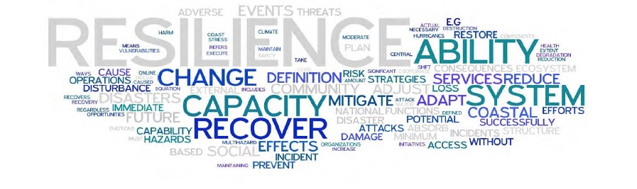Resiliency3