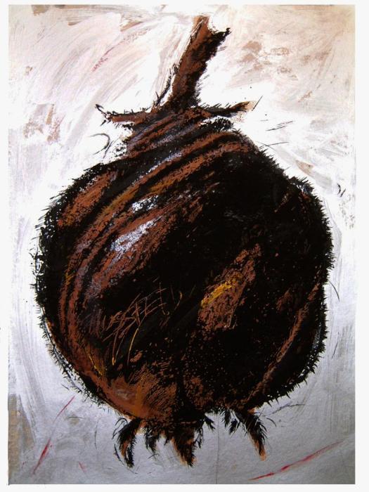 BLUMENBACHAIA 2003, mixta y serigrafia, papel, 70 x 100 cms.