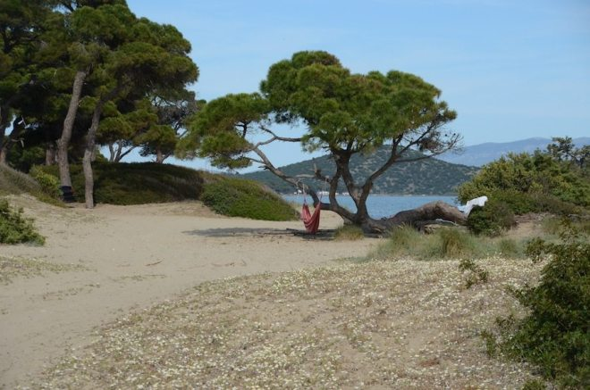 Entspannter geht es wohl kaum - Schinias-Beach bei Athen