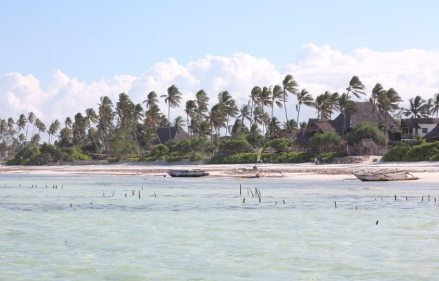 Strand Sansibar: Backpacking-Tipp Matemwe
