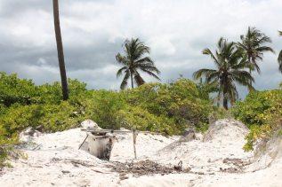 Authentisches Matemwe: weißer Puderzucker-Strand auf Sansibar