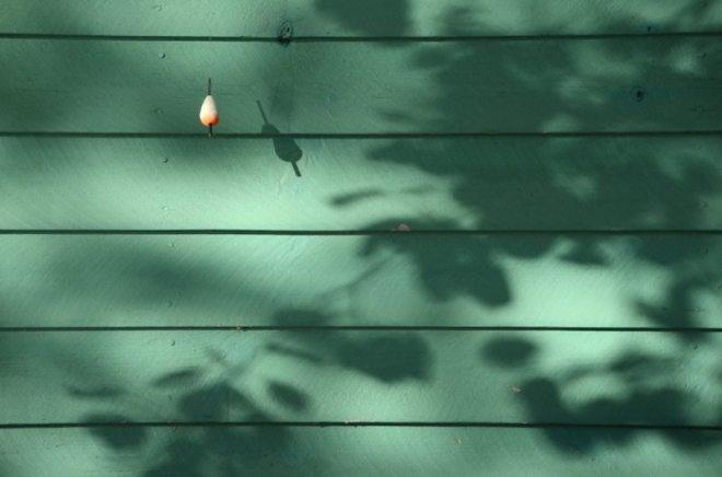 Licht und Schattenspiel
