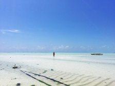 Schönste Strände auf Sansibar: Paje bei Ebbe