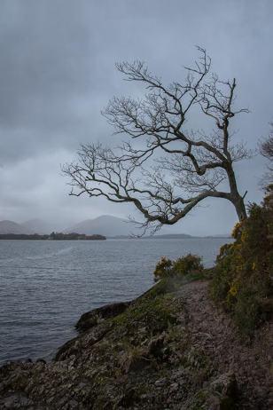 Verwegen und wild: Der Loch Lomond in Schottland