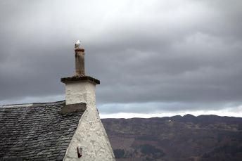 Luss in Schottland am Loch Lomond - Tipp für eine Rundreise