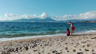Rettungshund trainiert am Agosta Beach bei Porticcio an der Westkueste Korsikas