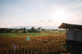 Chiang Dao in Thailand: Das Tal