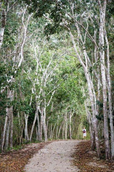 yucatan-rundreise-tipps-ek-balam-weg-cenote