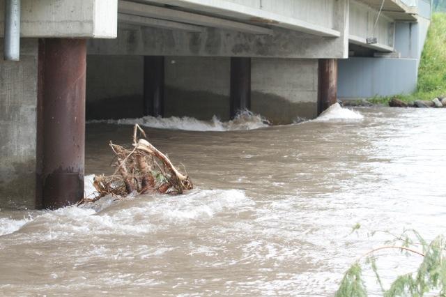 Flood Mitigation Public Information Session