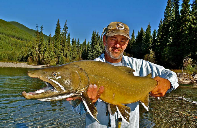 Elk River Opens for Fly Fishing