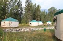 FRVR yurt group