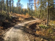 Fernie gravel trail winding