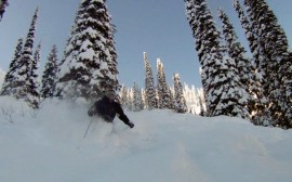 Ron powder skiing