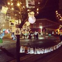 lantern festival in fernie - northern lights