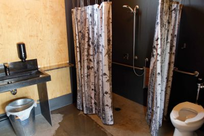 Washroom handicap shower
