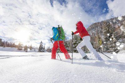 FRVR snowshoe LR