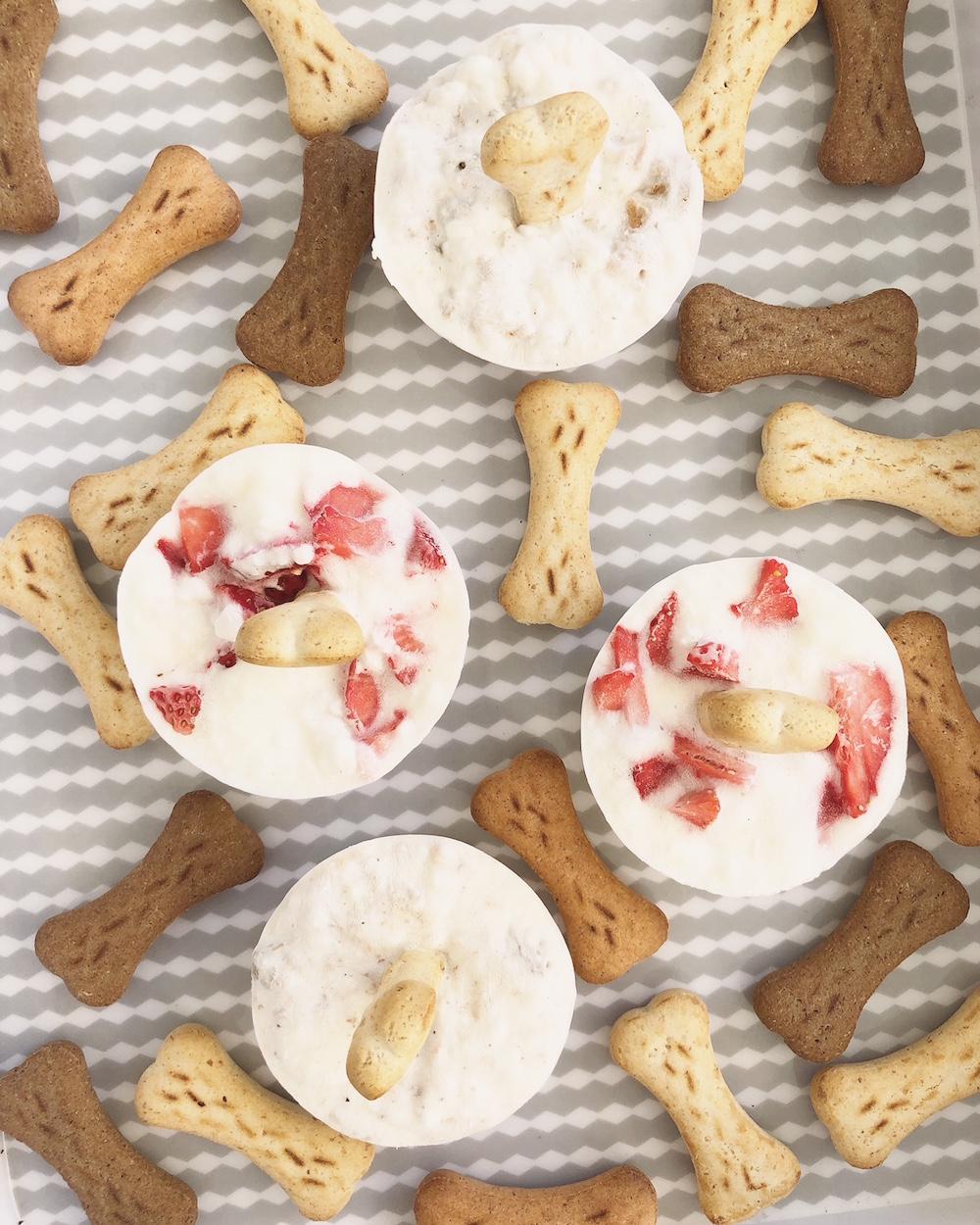 Selbstgemachte Pupsicles, Hunde-Eis, in den Sorten Strawberry Cheesecake und Leberwurst-Cookie Dough.