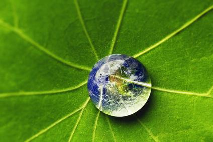 <strong>Der Fernlehrgang Grundwissen Ökologie ist sehr komplex und vielseitig.</strong><br/>© yellowj - Fotolia.com