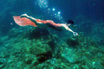 Meerjungfrau