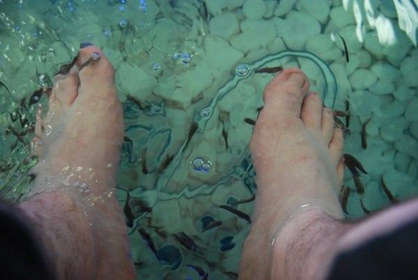 Dr. Fish Spa Rethymnon Altstadt Kreta Griechenland