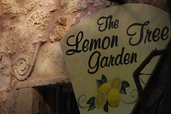 Kaffeepause Lemon Tree Garden Rethymnon Altstadt Kreta Griechenland