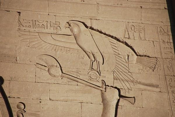 Horus Tempel von Edfu Falke Relief Ägypten Nil Nilkreuzfahrt