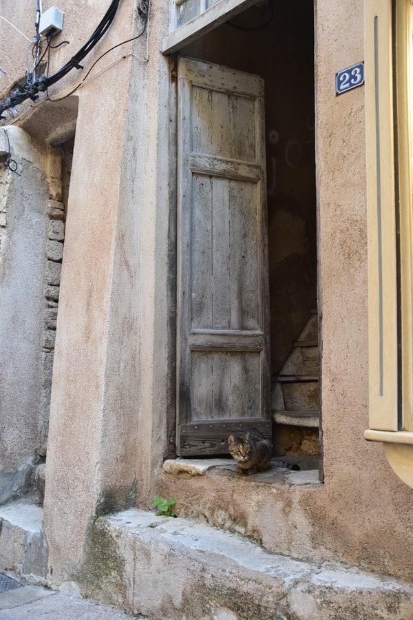 Bonifacio Korsika Katze Gassen Altstadt Zitadelle Frankreich