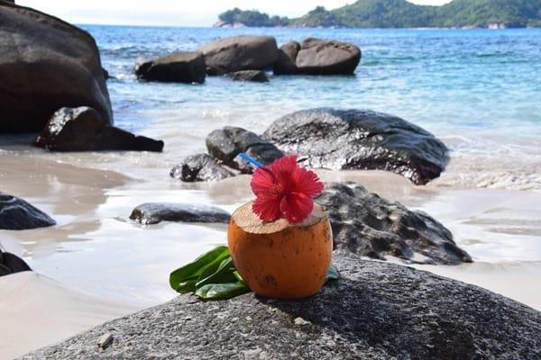 20_Kokosnuss-am-Traumstrand-Anse-Takamaka-Mahe-Seychellen