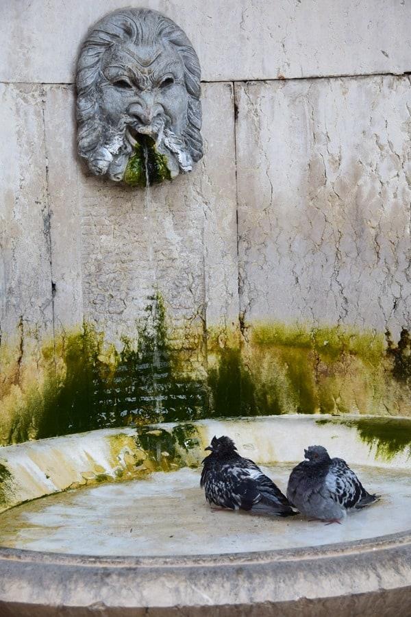 Verona Sehenswürdigkeiten historischer Brunnen Piazza Indipendenza Vogelbad Italien