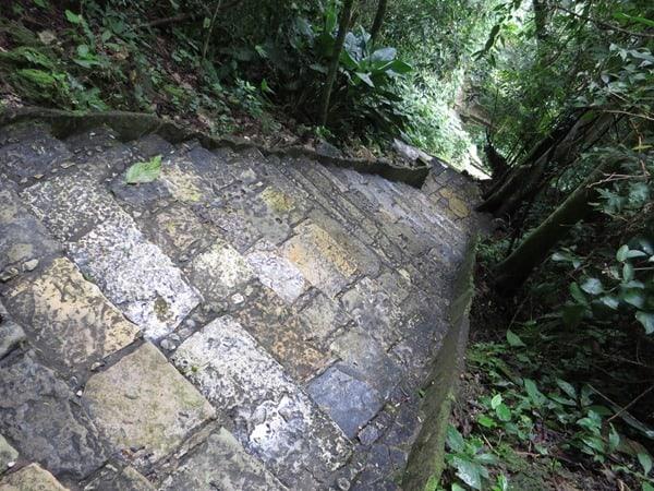 Palenque Mexiko Sehenswürdigkeiten steile Treppen Urwald Maya Stätte