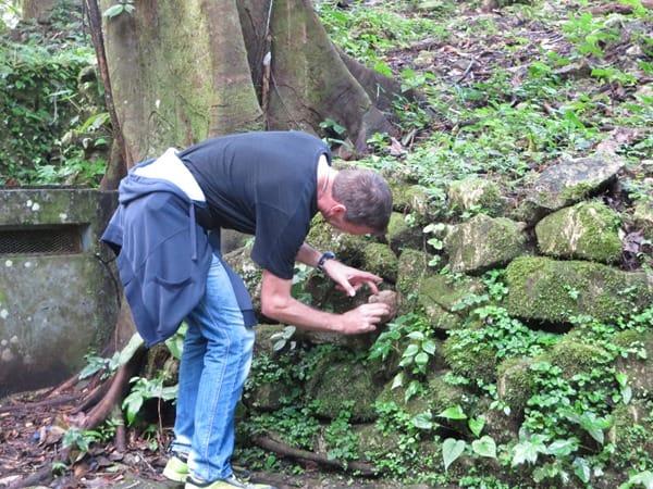 Palenque Mexiko Sehenswürdigkeiten Geocaching Urwald Maya Stätte