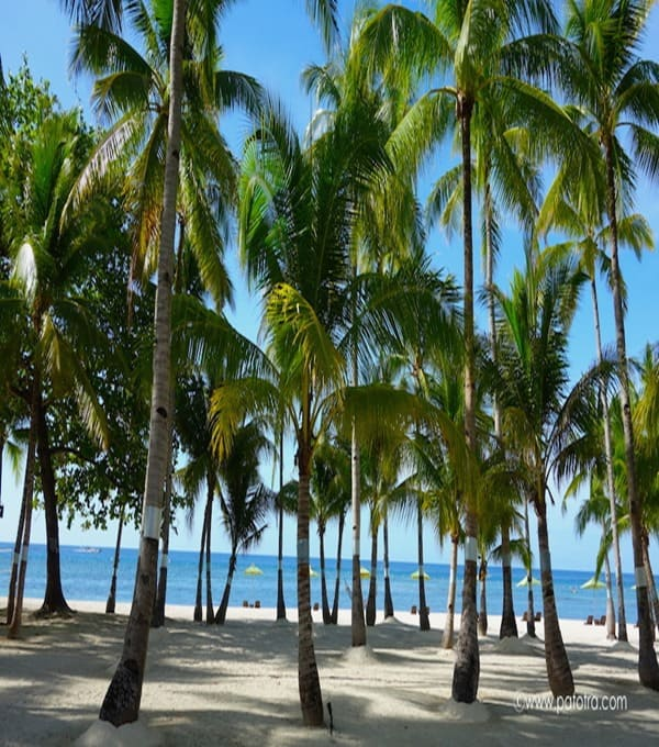 Strand auf Panglao Philippinen