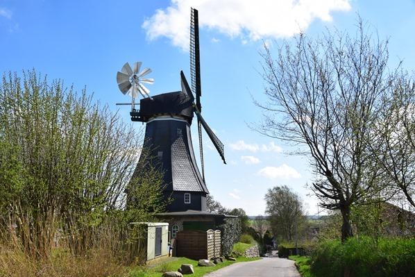 Nordsee Urlaub Windmühle Storchendorf Bergenhusen Nordfriesland Schleswig-Holstein Deutschland