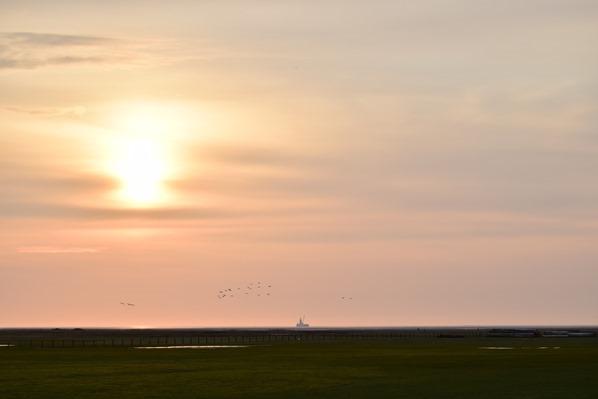 Nordsee Urlaub Sonnenuntergang Wattenmeer Friedrichskoog Dithmarschen Schleswig-Holstein Deutschland