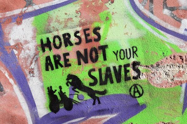 Horses are not your slaves Streetart Chania Kreta Griechenland