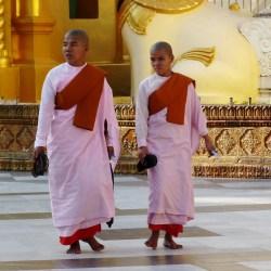 Burma 916
